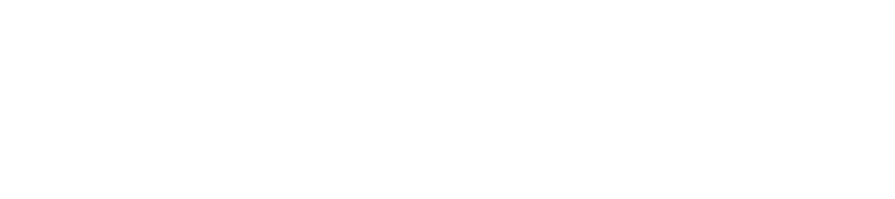 Liverpool City Champion